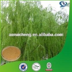 100% natural white willow bark salicin