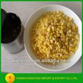 suministrar 400g maíz dulce en conserva en salmuera