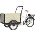 green 3 wheel cargo trike popular in Netherlands