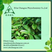 NATURAL Morinda Root / Radix Morindae Officinalis Extract