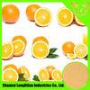 High Quality 100% Natural Lemon Powder/lemon peel powder