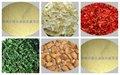Desidratados orgânicos produtoshortícolas/gengibre/alho/cebola