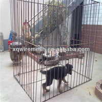 square tube dog cage pet kennel /pet cage
