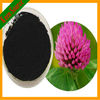 High Quality Red Clover Extract Trifolium Pratense Extract