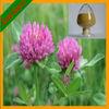 100% Natural Formononetin Red Clover Extract Trifolium Pratense