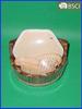BB-056 Bath Brush Set,Bath Gift Set,Sauna Product,Shower Products