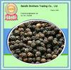 2013 black cultivation of black pepper