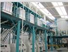 wheat flour milling machine and plant 60ton per 24hour