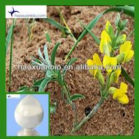 CAS 485-35-8 Sparteine 98%