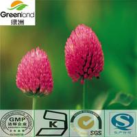 Herbal extract Red Clover Extract20%Isoflavones
