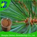 100% pure natural pharmaceuticals/des produits de santé/d'aiguilles de pin extrait de poudre/tlc/20:1