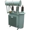 33 KV 50KVA Three Phase Oil Immersed Distribution Transformer