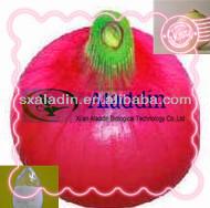 Superior quality Onion Extract