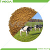 China Manufactuer Chemical Feed Additives Bacillus Subtilis for Animal Feed