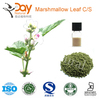 Cigarettes Material Marshmallow Damiana Suppliers