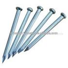 concrete nails.steel nails
