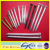 hebei Factory Rust proof metal nails for sale
