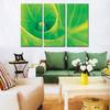 Cheap Modern Leaf Paintings