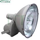Adjustable Angel IP65 Induction Flood Light 40W-300W
