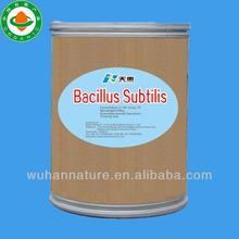 bacillus subtilis 200 billion cfu/g TP organic fungicides