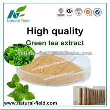 herbs green tea extract powder