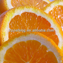 Top supplier of great quality Vitamin C 99% food grade