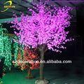 Rs-tl98 flor pistache árvore