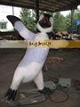 بلدي باركدينو-- أكوا الألياف الزجاجية مطاط الحيوان طيور البطريق