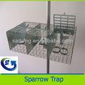 caliente venta de vivir de aves de jaula trampa