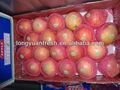 fruta fresca qinguan apple nueva cosecha 9kg cartón