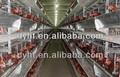 Chine vente bonne qualité automatique poulet coop pour batterie cage poules pondeuses, Couche cage