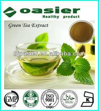 GMP Manufacture Supply Green Tea Powder Extract 98%Polyphenol CAS No.:84650-60-2