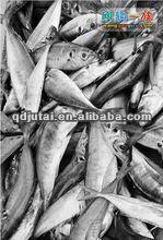 Canned tuna 185g/130g