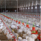 new design chicken floor system