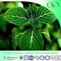 Extrait d'écorce de yohimbe corynanthe( yohimbine 2-98%)