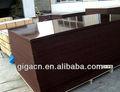 Giga - construction construction contreplaqué import export le marché de dubaï
