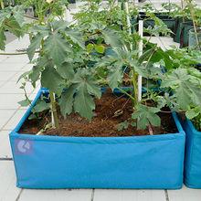 Raised planter boxes garden containers for garden design
