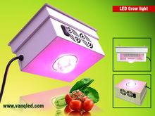 high par value led grow lighting, plant tissue culture led grow light
