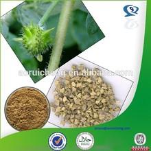100% natural tribulus terrestris 95 saponins