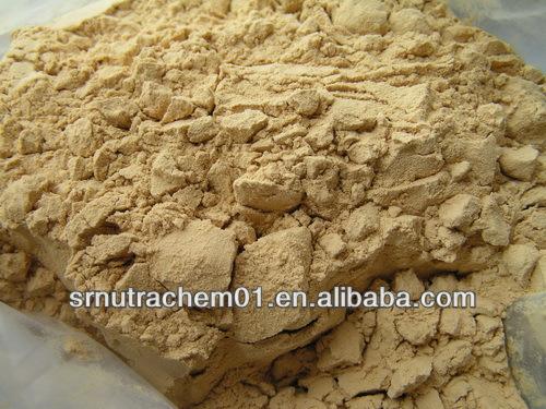 Hot Sale Dong Quai Powder