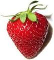 1 kg frutti di fragola