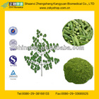 GMP Certified Manufacturer Supply Moringa Oleifera Leaf Extract