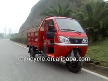 3 wheel trike/petrol motorcycle