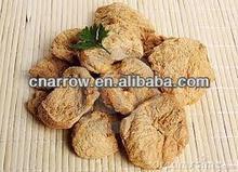 dried soya meat machine/making machine