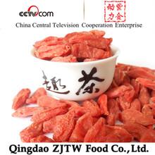 GMP Certified Factory Supply Goji Fruit