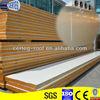 Certeg alibaba cold room panel manufacturer SGS for food store