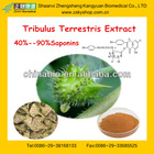 Free Sample Tribulus Terrestris Extract Powder Saponins