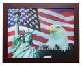 pet 3d eagle imagem com quadros