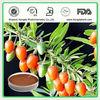 Chinese Herb Medicine 50% goji berry