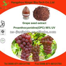 organic grape seed extract powder